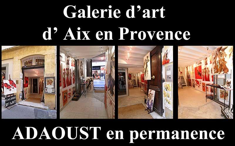 Galerie d'art Sylvie Adaoust d'Aix-en-provence 13100